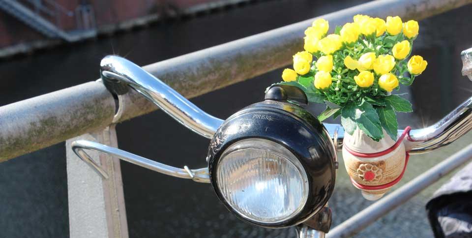 Hollandrad-Lenker